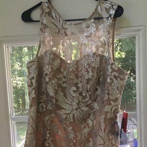 Marina sz 14 blush/silver lace & appliqué dress